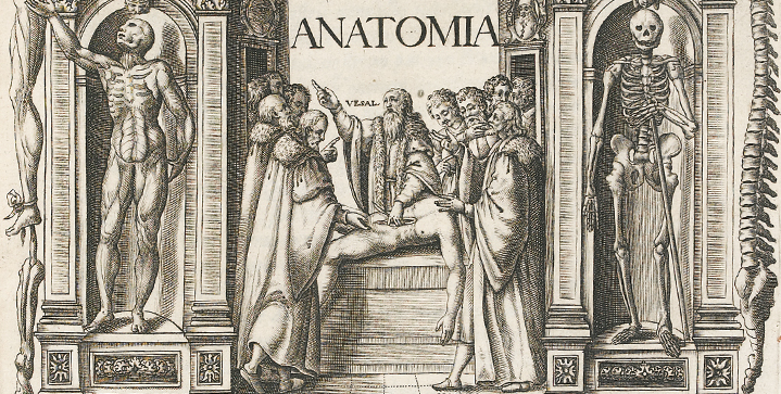 Early Printed, Medical & Scientific Books | May 1A number of Andreas Vesalius medical texts are among the highlights of this auction, including his Anatomia, Venice, 1604, pictured.