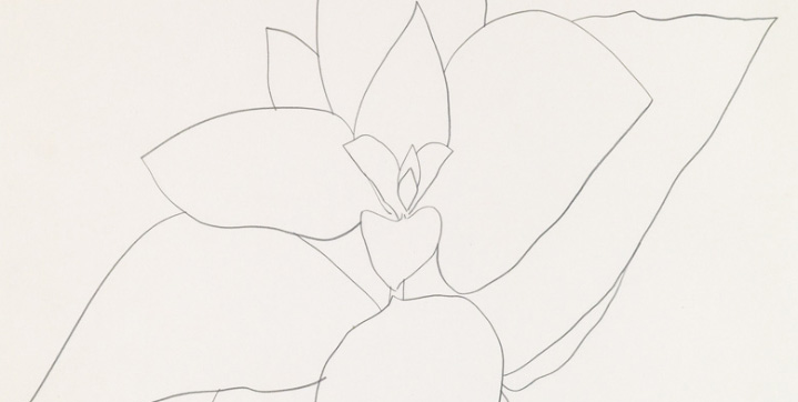 Ellsworth Kelly saw strong prices during our November Contemporary Art sale. His pencil drawing, Milkweed, 1969, which was acquired from the artist by Silas Rhodes of The School of Visual Arts, sold for $125,000.
