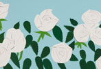 Record for White Roses by Alex Katz at $30,000