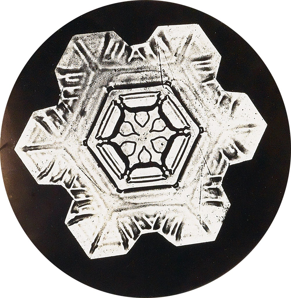 Wilson A  Bentley: Photographing the Fleeting Snowflake