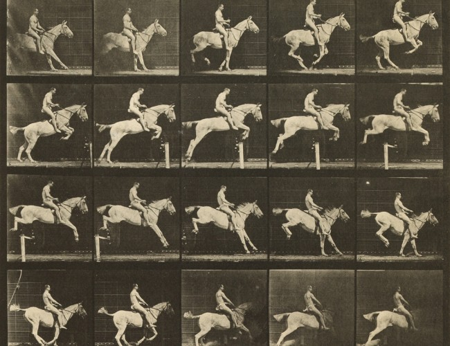 Lot 13: Eadweard Muybridge, 50 plates from Animal Locomotion, 1887. Sold February 14, 2017 for $62,500.