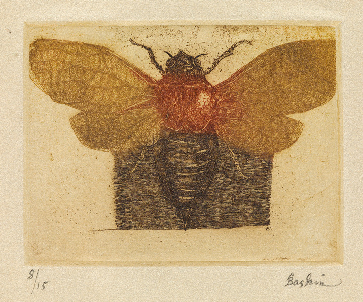 etching of a fly by Leon Baskin