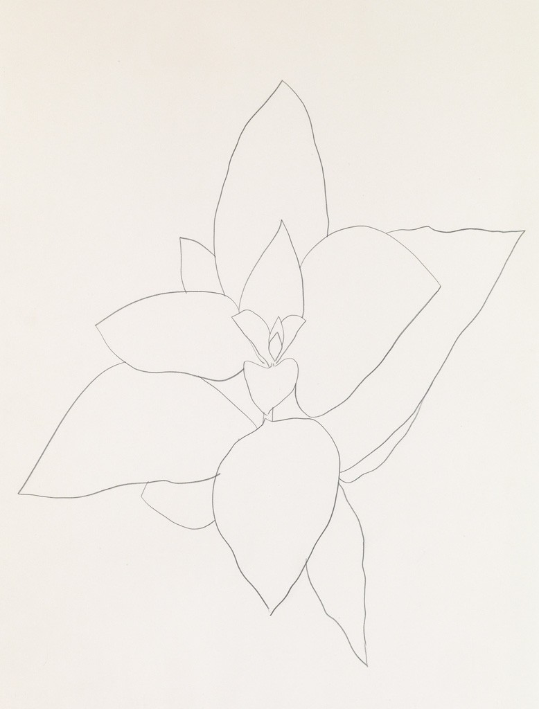 Ellsworth Kelly, Milkweed, pencil, 1969. Sold for $125,000.
