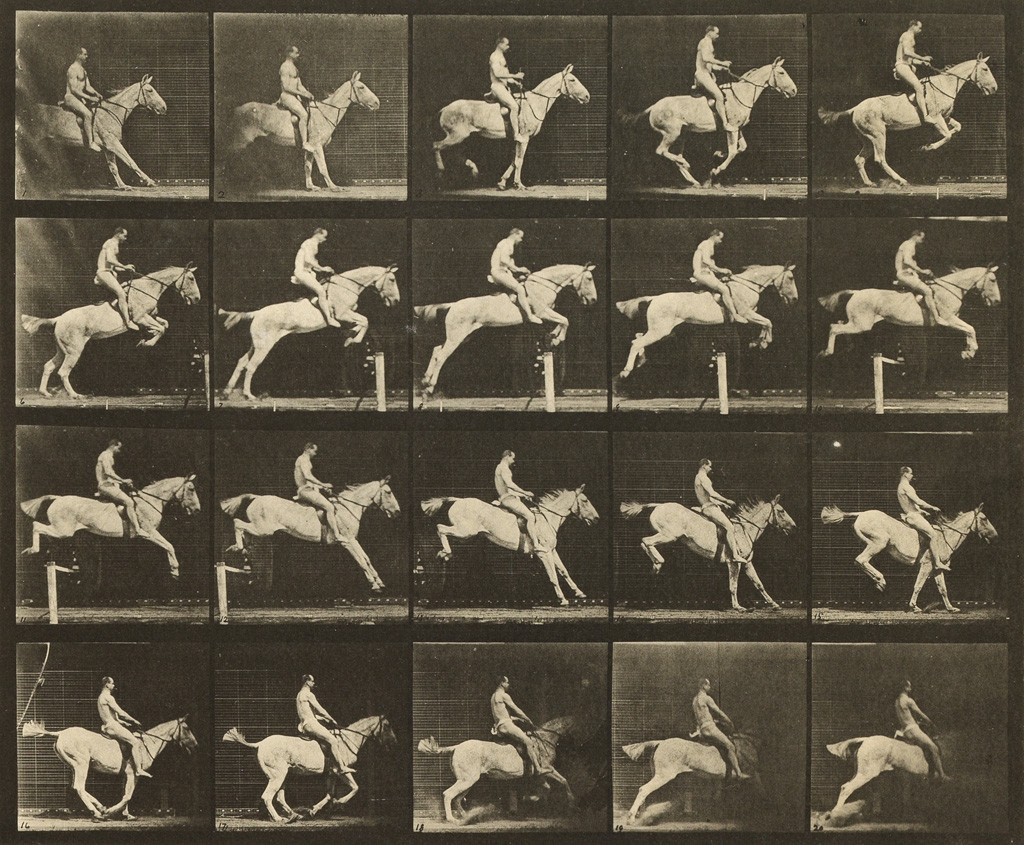 Lot 13: Eadweard Muybridge, 50 plates from Animal Locomotion, 1887. Sold February 14, 2017 for $62,500.