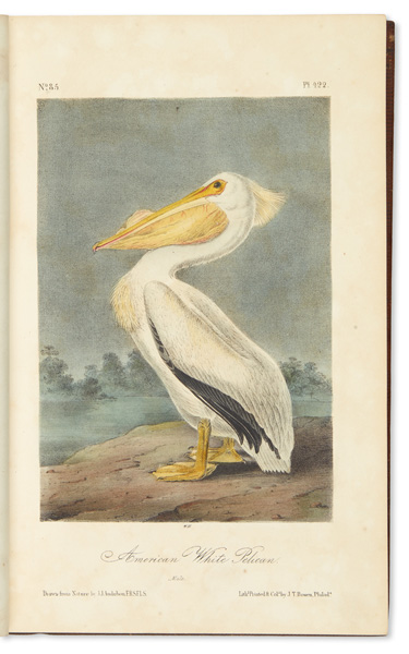 Lot 270: John James Audubon, The Birds of America, third octavo edition, New York, 1859. Estimate $20,000 to $30,000.