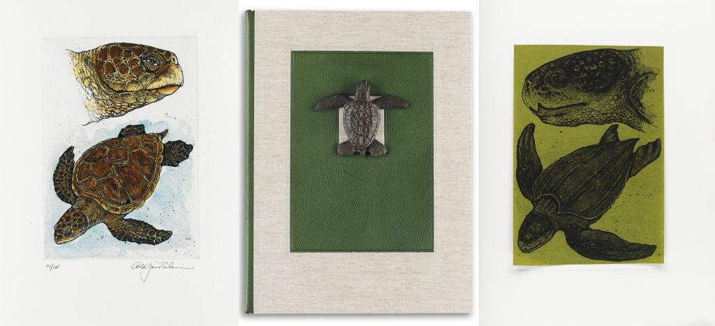 Cheloniidae: Sea Turtles by Alan James Robinson. Image includes a watercolor of a sea turtle, the cover with a small sculpture of a sea turtle, and a woodcut of a sea turtle.