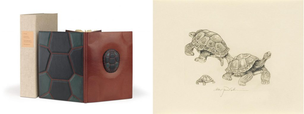 Tortoises by D. H. Lawrence with illustrations by Alan James Robinson, published by the Cheloniidae Press. Image of the binding with features a small turtle shell sculpture as well as the texture of a turtle shell on the back, and a sketch of three turtles.