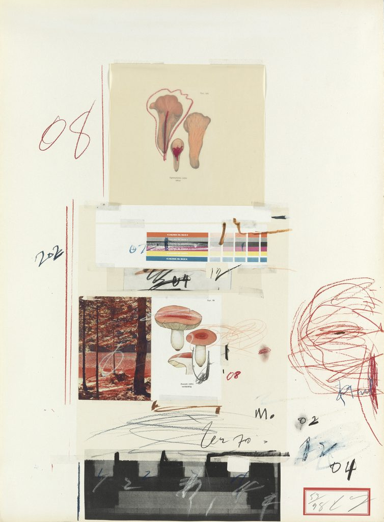 Abstract collage with images of mushrooms by Cy Twombly.