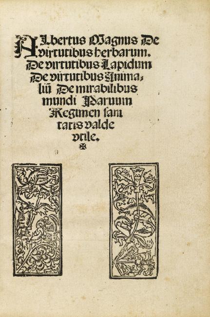Magnus Albertus, Liber aggregationis, Cologne, circa 1506.