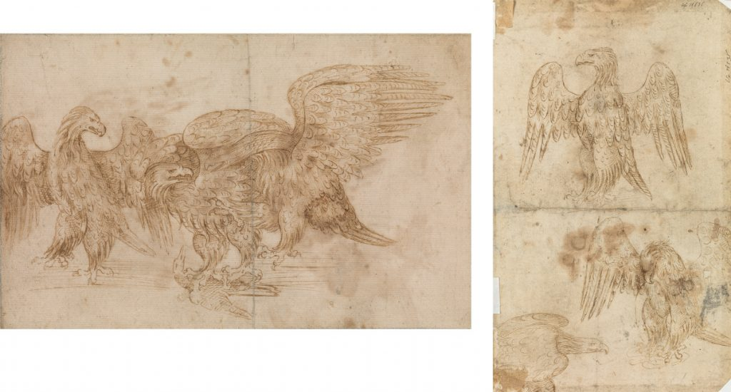 Italian School, early sixteenth century, Studies of Eagles, pen, ink and wash. $4,000 to $6,000.