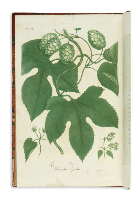 Jacob Bigelow, American Medical Botany, cited as the first botanical work published in America, Boston, 1817-20.